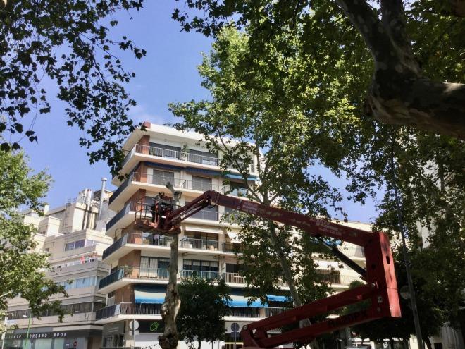 avenida de cadiz 2018-07-10 at 14.24.55