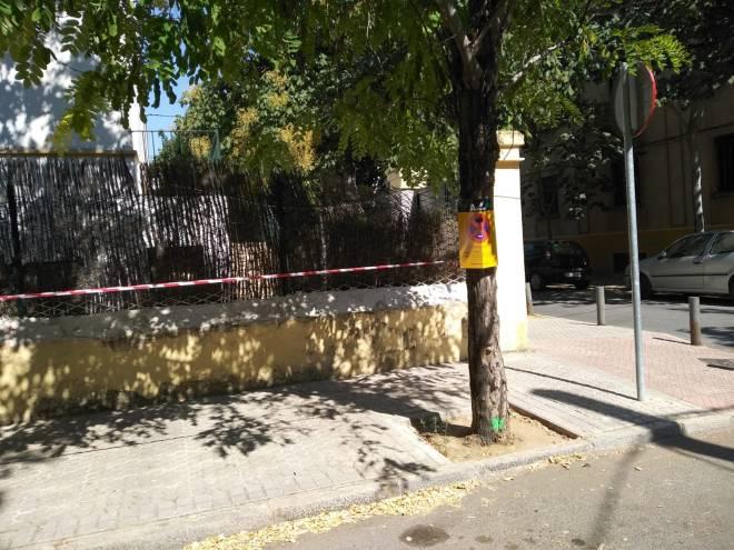 C: exposición en El Porvenir, 3 acacias para mañana 2018-07-16 at 18.29.48