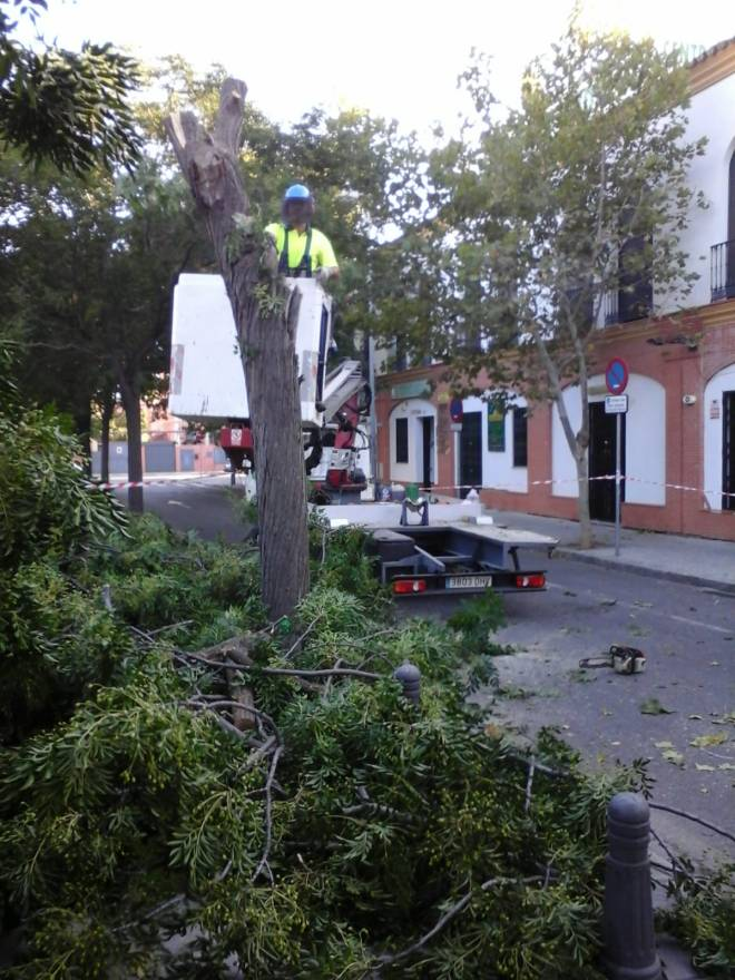 calle Amsterdam 2018-07-16 at 09.14.59