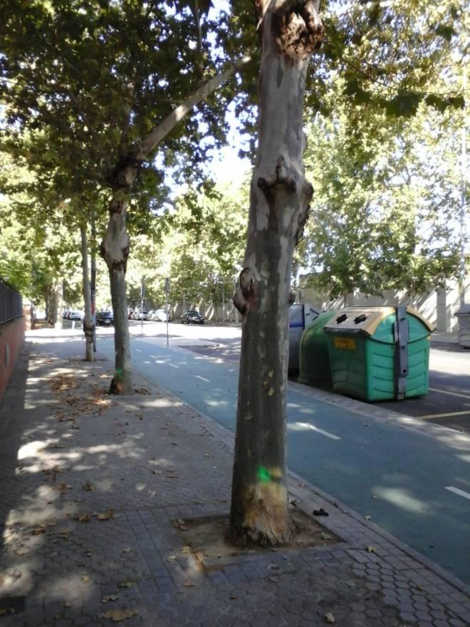 la calle Siena 2018-07-16 at 10.13.54