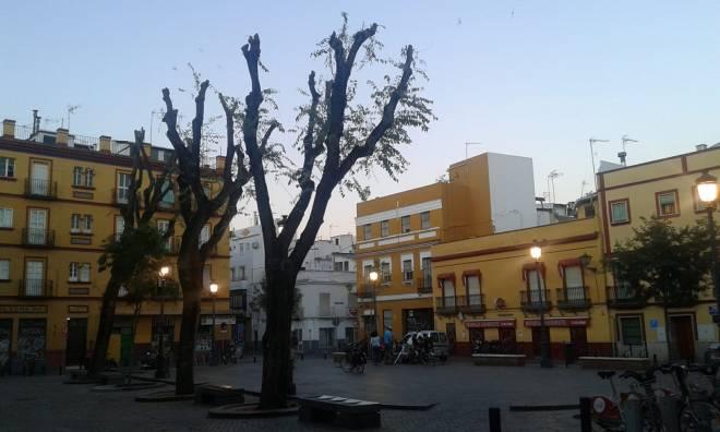 plaza pumarejo 2018-07-04